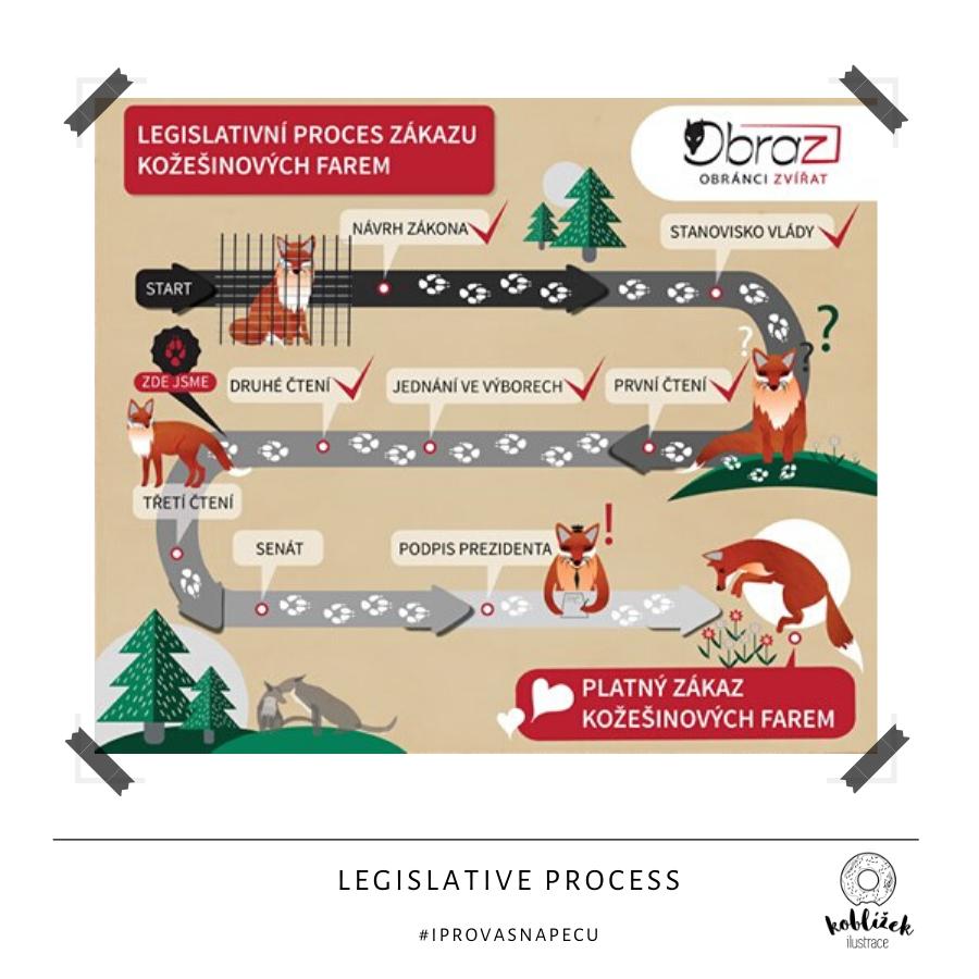 Infografika legislativní proces